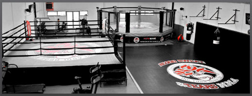 Mogul Fight Management Gym
